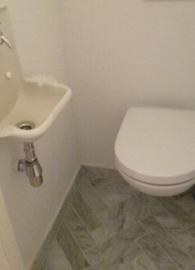 Vloertegel en wandtegel marmer Bianco Carrara Venato  wit  400x97x15 mm mat gezoet VISGRAAT Prijs per m2
