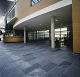 Vloertegel leisteen Brasil Black Slate zwart antracite 300x600x10 mm mat Prijs per m2