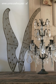 Engelenvleugels/ Angelwings SOLD