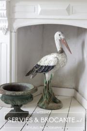 Beautiful stork