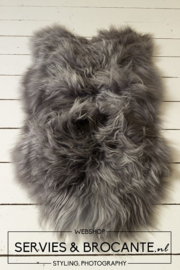 Grey Sheepfur