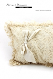 Prachtig kussen RH2/ Wonderful pillow SOLD