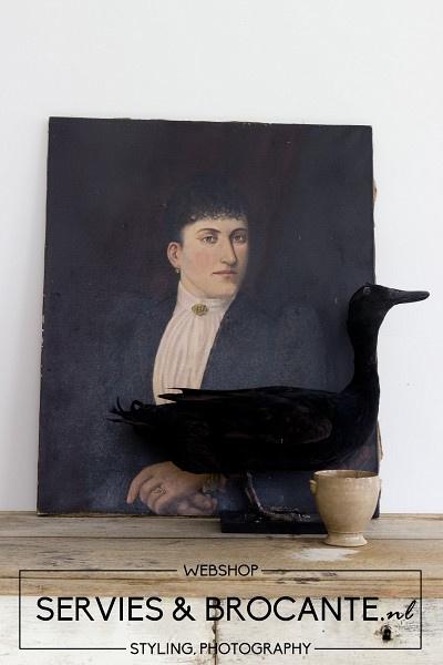 Zwarte opgezette eend Sold