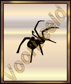Spider Scary- 188A - 39