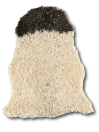 Curly Sheepskin Blackheads
