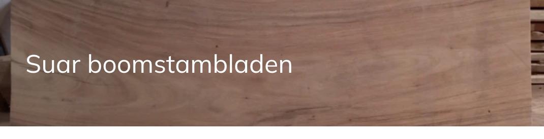 Suar boomstambladen | JORG'S Meubelen