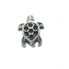 Floating locket - charm schildpad