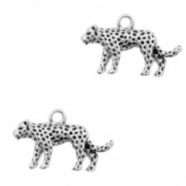 Bedel luipaard