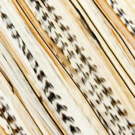 Featherheads Wedding Bells Originals bundel van vier