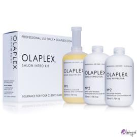 Olaplex herstelbehandeling No. 01 en No 02 mogelijk bij Lindseys kapslon