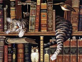 kat in boekenkast 3040/102 ronde steentjes HLQ-01602