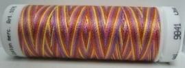 Mettler Silk-Finish Multi 100meter 9841