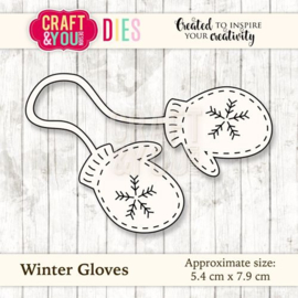 winter gloves CW035