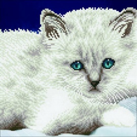 49295 Diamond Art Kits 32cmx32cm White Cat  NIEUW!!!