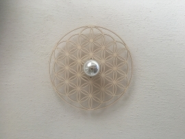 Flower of Life  shadow