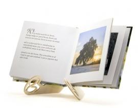 Boekjesstandaard lemniscaat klein