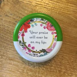 Vaseline lippenbalsem Aloe Vera met tekst (groen)