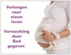 Hoera zwanger!