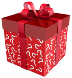 kerstpakketjes voor 'de Herberg'