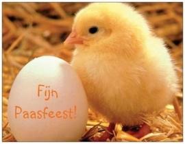 Fijn Paasfeest! kuikentje+(kinder)gedichtje achterkant