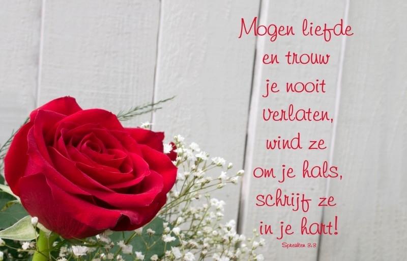 Merci kaart Mogen liefde en trouw..