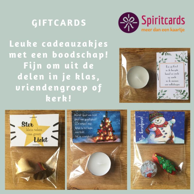 Giftcard Zakjes 25 stuks  (alleen icm giftcards)