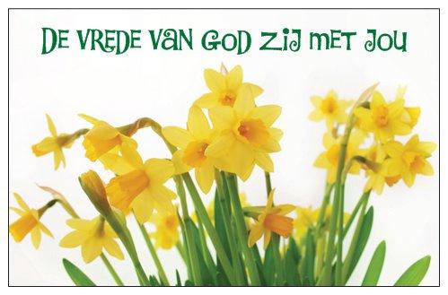 [Giftcards] Vrede van God Narcis