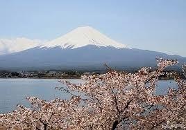 Mount Fuji.     10 ml. : Sprankelend fris en verademend