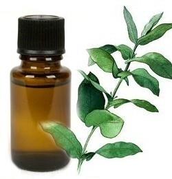 10 ml. olie voor peesproblemen zoals ontstekingen en irriaties.