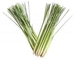 Lemongrass 5 ml