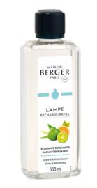 Radiant Bergamot
