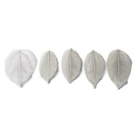 Witte blaadjes voor verwerking in giethars