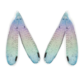 Resin Dragonfly Wings Multicolor (2st)