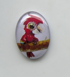 Glas cabochon ovaal Baby Papegaai