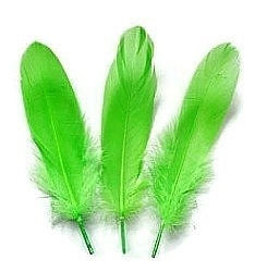 Ganzenveren groot Licht Groen (10st)