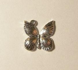 Bedel vlinder 002