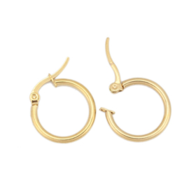 304 Stainless steel Oorbel Hoops RVS Gold Plated 2cm (1 paar)