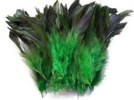 Hanenveren Groen (10st)