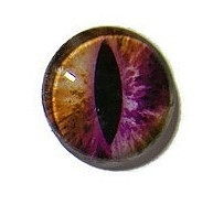 Dragon Eye 017, 25mm Glas Cabochon Rond