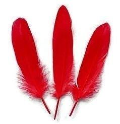 Ganzenveren groot Rood (10st)
