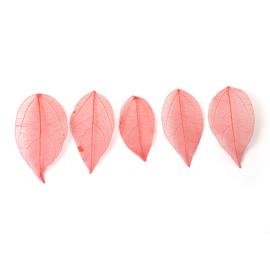 Rode blaadjes voor verwerking in giethars