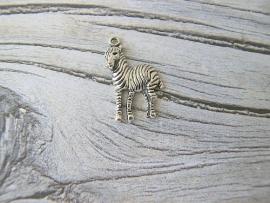 Bedel Zebra
