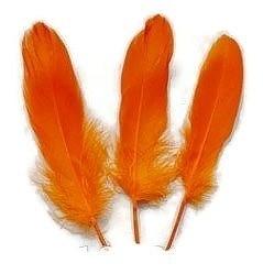 Ganzenveren groot Oranje (10st)