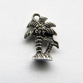 Bedel Palmboom 001