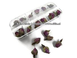 Doosje met Gedroogde Rozen Knopjes Purple voor Resin