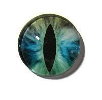 Dragon Eye 016, 25mm Glas Cabochon Rond