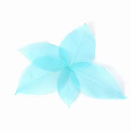 Blauwe blaadjes voor verwerking in giethars