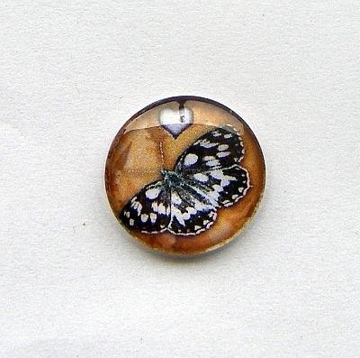 Vlinder 002 25mm Glas Cabochon Rond