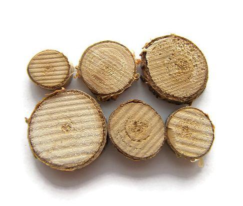 Houten Schijfjes berk 1-3 cm (5st)