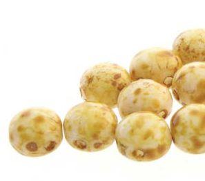 Candy Bead  Preciosa White Travertine 8mm